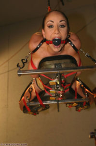 House of Gord -  Hogtied and Hoisted